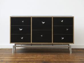 Butterfly Cabinet